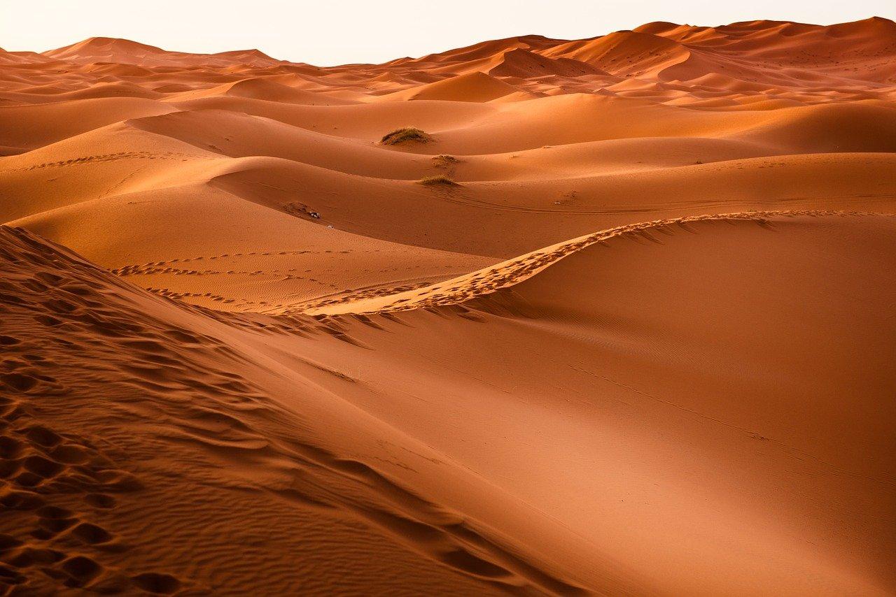 desert, morocco, sand dune